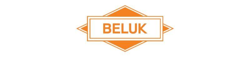 دانلود کاتالوگ مشخصات، قیمت خرید و نمایندگی فروش رگلاتور خازنی و کنترل کننده پله های تابلو برق بانک خازنو اصلاح ضریب قدرت بلوک BELUK المان